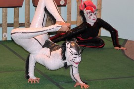 Bugging Out with Cirque du Soleil's OVO Contortionists at Academy of Natural Sciences
