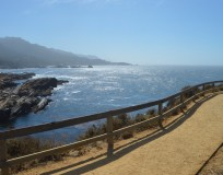 Hike Point Lobos State Park in Monterey, California Where Land Meets Sea for Spectacular Views