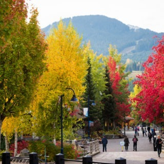 Fall in Love with Whistler in British Columbia, Canada in Autumn